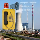 Il telefono industriale IP66 dell'altoparlante forte rende il telefono resistente all'intemperie Emergency con il corno