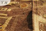 إفريقيّة أريكة تغذية بناء ([فث31154])