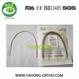 Collegare ortodontico medico dell'arco di Niti del materiale dentale