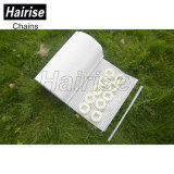 Hairise 1100 Gelijk Net met Openingen Ballfletransfering spoelt de Modulaire Riem van het Net voor de Rang van het Voedsel