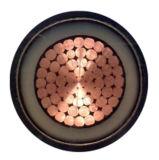 Yjvt 4+1 сердечник XLPE изолировало обшитый PVC концентрический силовой кабель проводника