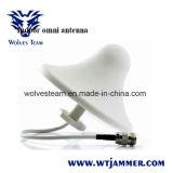 GSM/Dcs à deux bandes (900MHz/1800MHz) pour la servocommande de signal de téléphone cellulaire