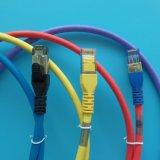 le réseau Ethernet de 10FT CAT6A a amorcé le gris de câble