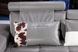 Liegesofa-Wohnzimmer-echtes Leder-Sofa-Möbel