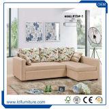 Neues Entwurfs-Falten-heraus Gewebe-Lagerschwelle-Sofa-Bett