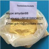 Poudre de stéroïdes Trenbolone Enanthate pour le muscle CAS de construction : 10161-33-8