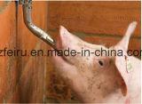 """1/2""""Tétine en laiton pour Piglet"""