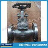 Válvula de globo de acero forjada