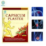 El mejor precio de yeso con certificado CE Capsicum poroso