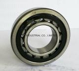 Roulements à rouleaux cylindriques de haute qualité Nj231e, NJ214e, NJ215e, NJ216e, NJ217e, NJ218e, NJ219e, NJ220e