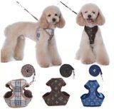 High-End van de Levering van het Product van het Huisdier van China de Uitrusting van de Leiband van de Hond van de Producten van het Huisdier