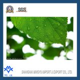Alimentos Verdes Addtive Supplly cobre Chlorophyllin Sodio
