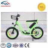 LED表示女性様式のEバイク