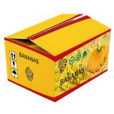 Rectángulos de empaquetado del papel acanalado del plátano