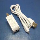 5V самонаводят заряжатель с микро- заряжателем кабеля USB
