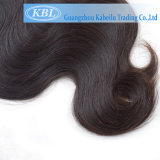 Malaysian Virgin Cheveux (KBL-MH)