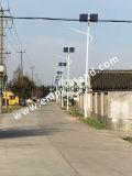 30W IP68の特別価格の太陽街灯