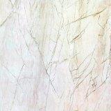 건축재료 녹색 충분히 윤이 난 사기그릇 지면 (800X800mm)