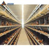 China Fornecedor de camada de Estrutura de aço barato capoeira Galinha Farm House