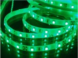 Cc12V SMD5050 RGB LED DE TIRA la luz con garantía de 2 años
