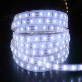 20-22lm/LED SMD2835/LED DE 60M IP20/IP65/IP68 LED de silicio soga tira de luces.