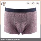 Mann-Boxer unterweist Unterwäsche mit elastischem Bund