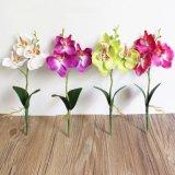 Искусственные цветы Phalaenopsis с 3 цветов для дома украшения