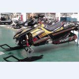 EPA 350cc Sneeuwscooter Met water gekoelde, TweelingCycliner, Efi Snowsccoter, ATV, Duin Met fouten,