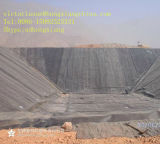 HDPE Geomembrane voor de anti-Lekkage van het Afval