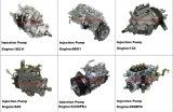 Pièces du chariot élévateur 1dz/6bg1/13z/S4S/C240/490GPB pompe injection