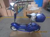 24V 250Wの電気スクーターか電気自転車の12inch電気スクーター(ET-ES04-A)