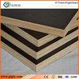 La película enfrenta antideslizamiento de tamaño estándar para la construcción de madera contrachapada