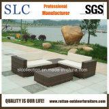 藤のソファーまたは枝編み細工品の角のソファーかラウンジのソファー(SC-B9503)