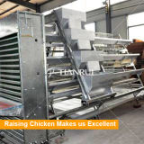 Цыплятина Tianrui поднимая оборудование, котор тип автоматический цыпленок яичка арретирует