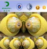 試供品の食品等級の新鮮な果物のパッキングのためのPolytheneによって拡大される泡の多網のネット