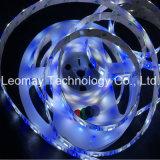 Indicatore luminoso della lista di colore LED dell'indicatore luminoso di striscia del kit del LED 5050SMD DC24V RGBW