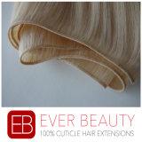 Capelli umani 100% dei capelli umani del Virgin professionale del fornitore