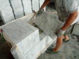 Новое белое мраморный цена плиток и слябов белое мраморный
