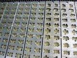 Lopende band van het Suikergoed van de Gelei van de Lijn van de Verwerking van het Suikergoed van de Machine van het suikergoed de Gedeponeerde Voor het Suikergoed van de Gelei van de Vorm van de Beer (GDQ300)