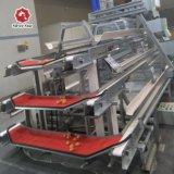 De Apparatuur van de Landbouw van de Kip van het Gevogelte van de Kooi van de Laag van de Batterij van het staal