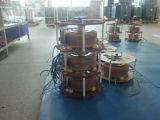 Zu überbelasten Wechselstrom-einphasig-automatisches Spannungs-Leitwerk (DBW-20kVA)
