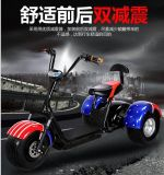 (YJ Halei Electeic Scooter-HLSL)