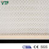 0.3Um porosidad y la eficiencia filtro HEPA H11-H14 para la campana de flujo laminar