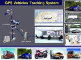 Мини GPS Tracker с веб-программное обеспечение для отслеживания (006)