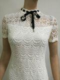 2017 neue Form-weiße Spitze-Bogen-Kleid-Kurzschluss-Hülsen-Damen kleiden koreanischen Entwurf