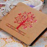 Álbum de foto creativo del atascamiento de alambre de la venta directa DIY de la fábrica, álbum de foto de hojas sueltas