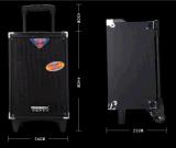 직업적인 오디오 휴대용 스피커, 무선 Mic와 더불어, Bt 스피커 나무로 되는 상자 F51