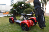[1500و] درّاجة ناريّة كهربائيّة مع [غلف بغ] حامل