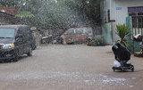 مرحلة ينجز ناد هبة ثلج آلة [2000وتّ]