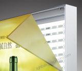 Frameless d'intérieur annonçant le cadre léger